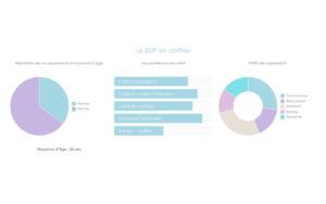 Optimisation CSS de graphiques